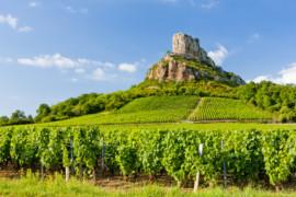 La Bourgogne sous toutes ses coutures