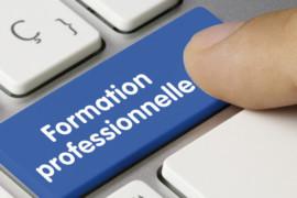 Réforme de la formation professionnelle en France